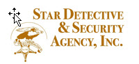 Star Detective & Security Agency, Inc.